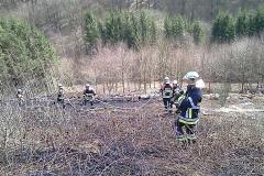 2010-03-25_waldbrand_hobscheid_20100325_1381002824