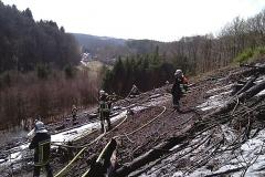 2010-03-25_waldbrand_hobscheid_20100325_1904289951