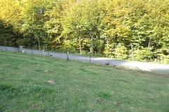 2012-10-21_unfall_hobscheid-septfontaines_5_20121021_1713983475